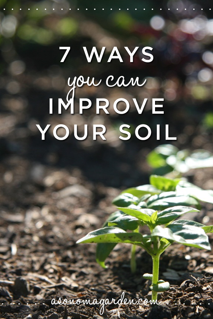 7 ways you can improve your soil for a healthier and more productive garden