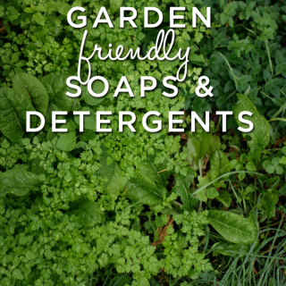 Tips and Helpful suggestions on household soaps and detergents that are good for the garden.