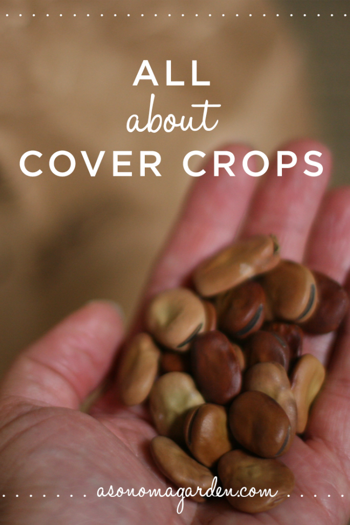 Great write up on what you need to know about cover crops