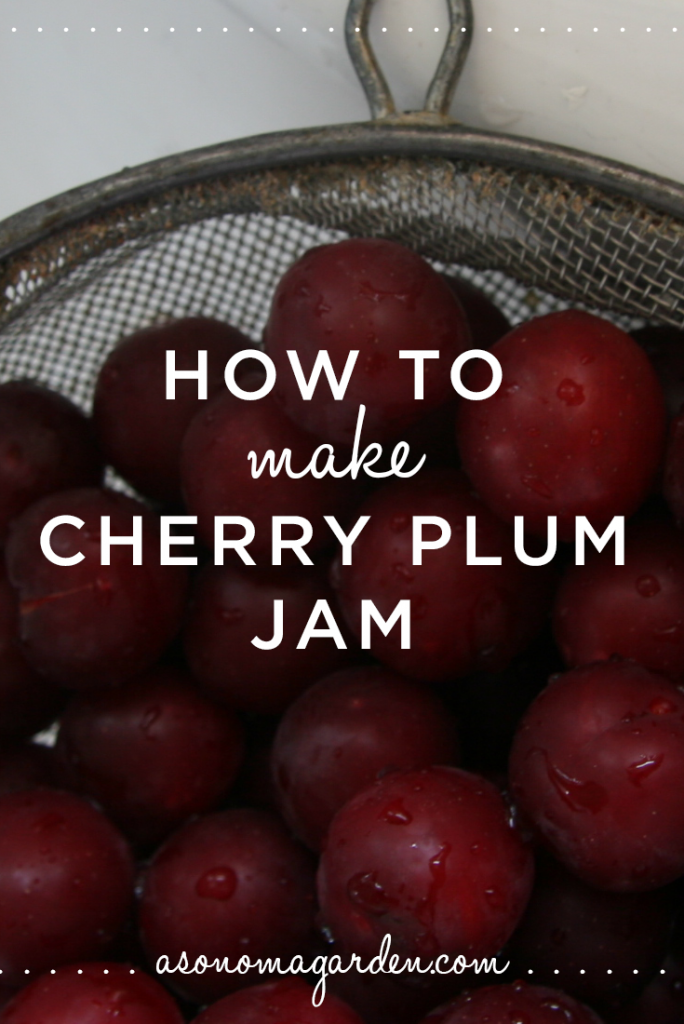 How to make cherry plum jam